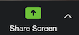 Image showing Zoom's share screen button